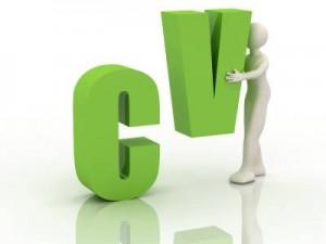pic_cv_writing_service_original