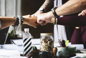 Organisational diversity linked to improved financial results